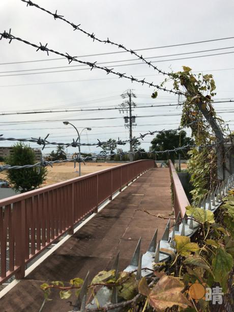 天満水道橋