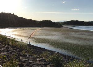 化女沼ダム