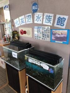 化女沼水族館