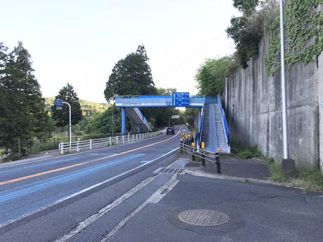半分青い歩道橋