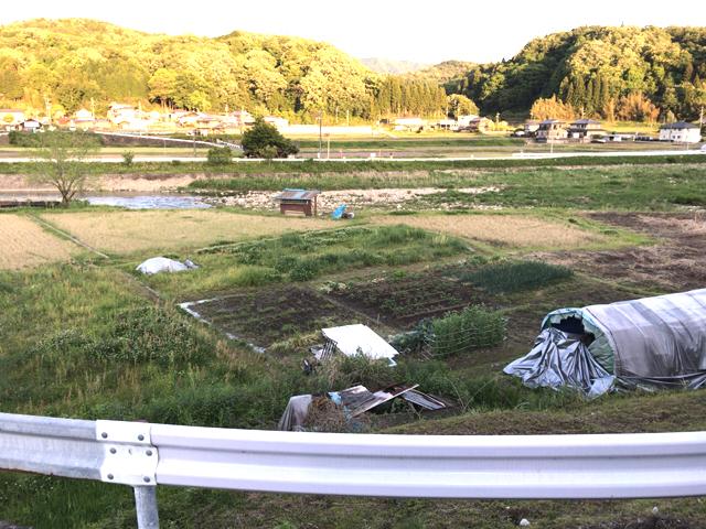 仙吉おじいちゃんの畑