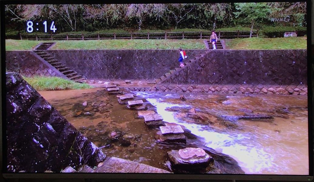 飛び石の川