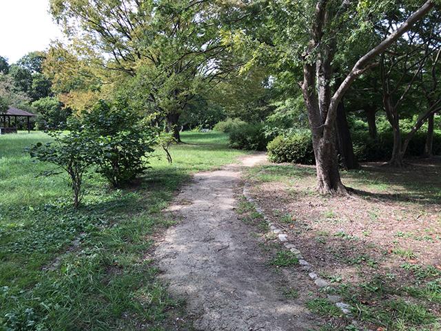 姉川河口公園
