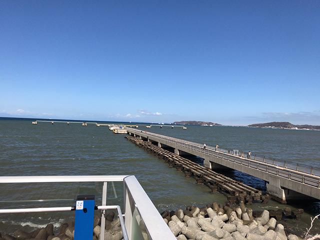 館山市高速船桟橋