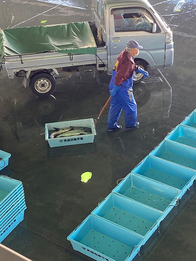 気仙沼魚市場