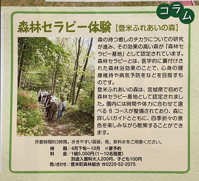 登米森林セラピー